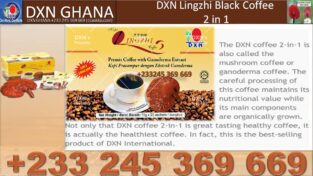 WHERE TO PURCHASE DXN COFFEE