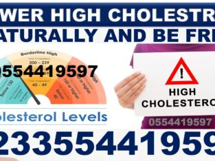 SOLUTION FOR HIGH CHOLESTEROL IN BODY